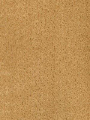 ReadyPrime is Exotic Veneeru0027s MDO (Medium Denisty Overlay) paper product which has been specifically designed for the paint grade door market. & Exotic Veneer Co. Ltd. | Finest quality wood veneer.