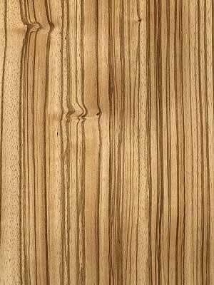 Zebrano | Exotic Veneer Co. Ltd. | Finest quality wood veneer.