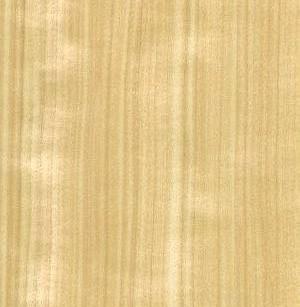 aspen-quartered