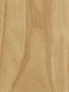 chestnutcrown