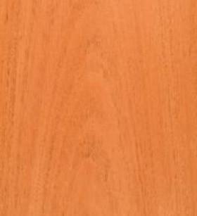 mahoganysouthamerican