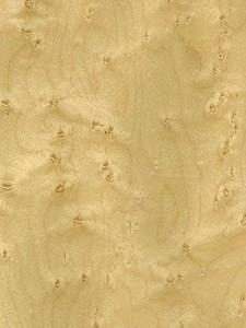 maple-birdseye
